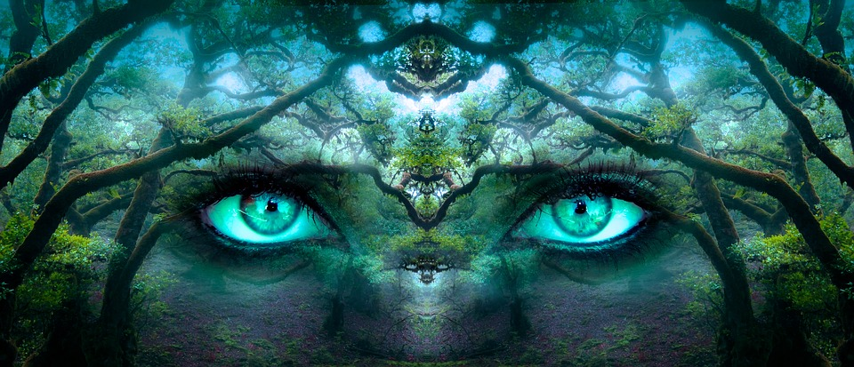 nature with eyes
